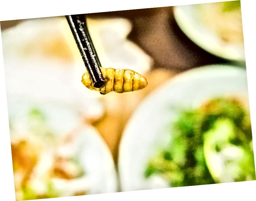 Sulu ipekböceği salatası. Mülayim lezzet ve bir üzüm dokusu.