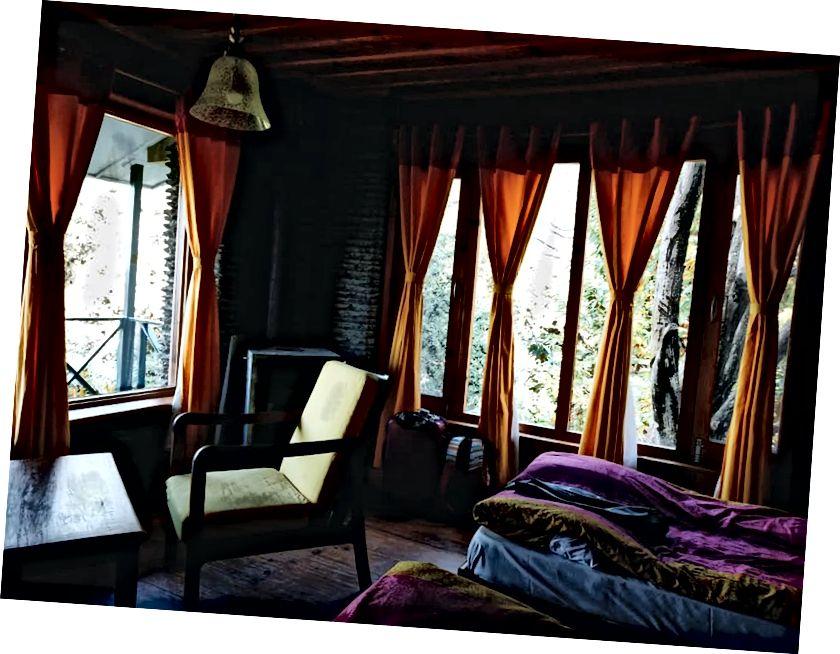 Відступ лісу Бінсар, штат Уттаракханд