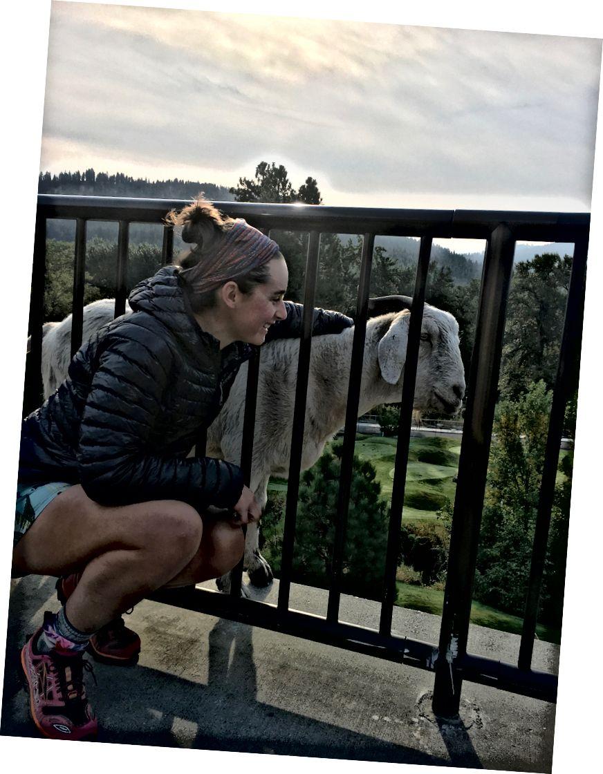워싱턴 주 레번 워스에서 염소를 만나면서 머리띠로 내 버프를 자랑합니다.