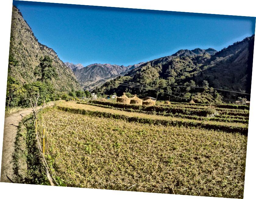 Ladang yang indah di desa pegunungan Ghermu