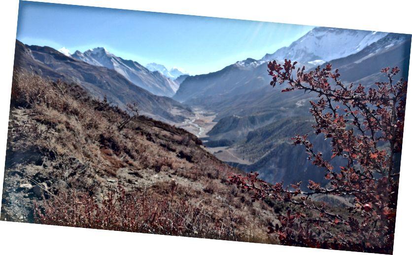 Pemandangan Manaslu dan Chulu Barat