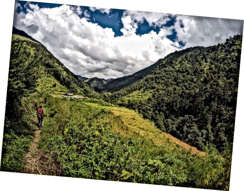 enroute Didna: Đường mòn Roopkund bắt đầu từ Lohajung và đi qua làng Baank đến Didna