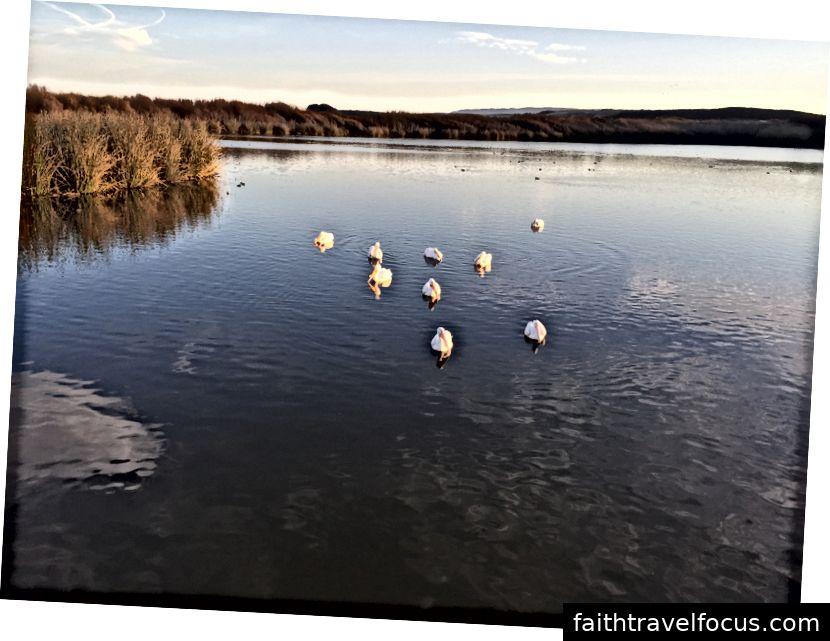 Hồ Oso Flaco.