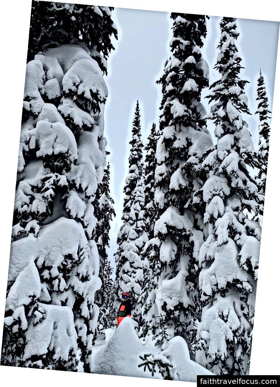 Đồi trượt tuyết Whitwater tháng 1 năm 2019! các bà già nhỏ bé đã bay tới Seattle, nơi họ bắt đầu chuyến đi 8 ngày đến đường cao tốc bột thăm Núi Đỏ và Whitewater.