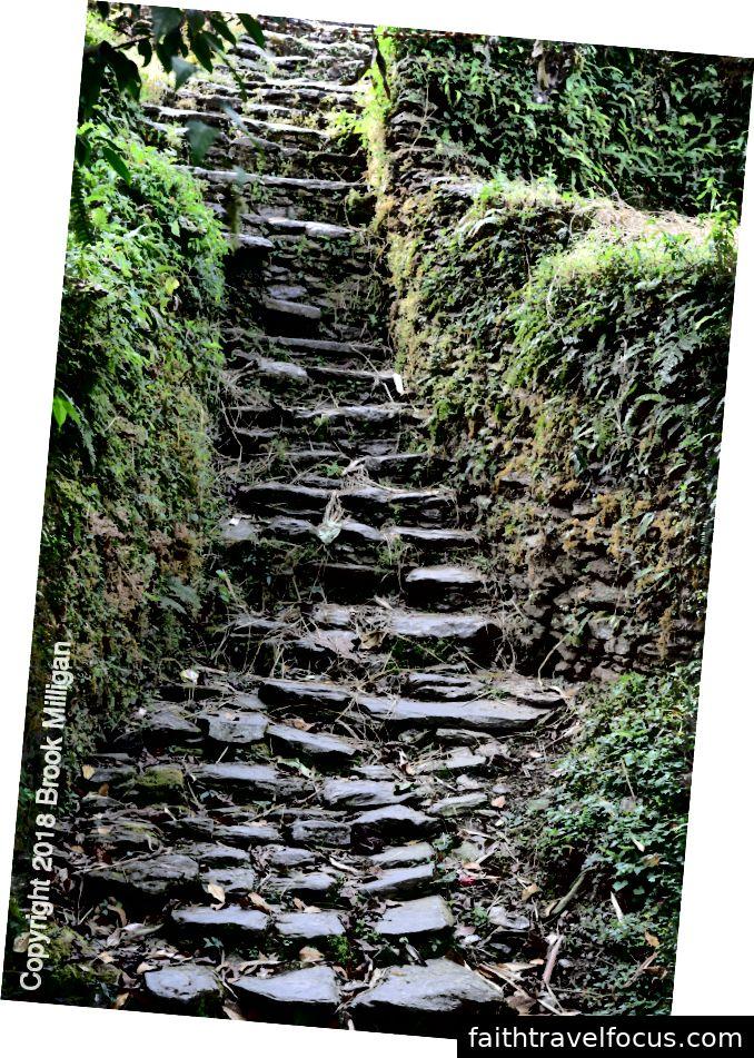 Con đường với những bậc đá.