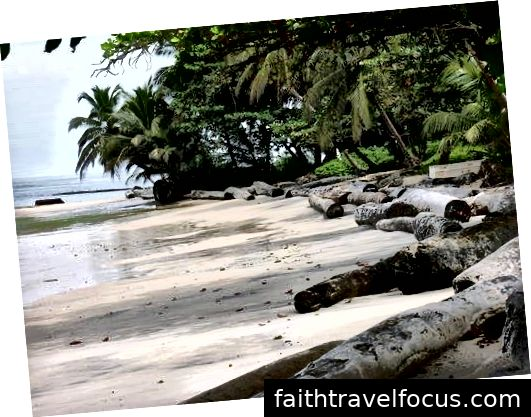 Bãi biển phía Bắc Libreville. Xuất khẩu gỗ xẻ là doanh nghiệp lớn ở Gabon. Ảnh tín dụng: Bret Itskowitch