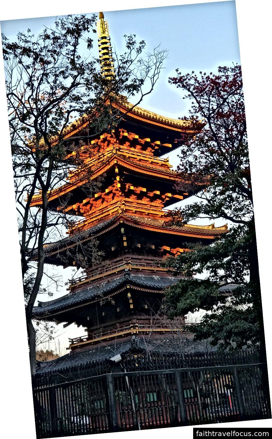 Harajuku và các điểm tham quan xung quanh Tokyo