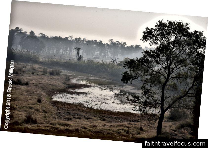nằm liền kề với khu bảo tồn sếu Lumbini.
