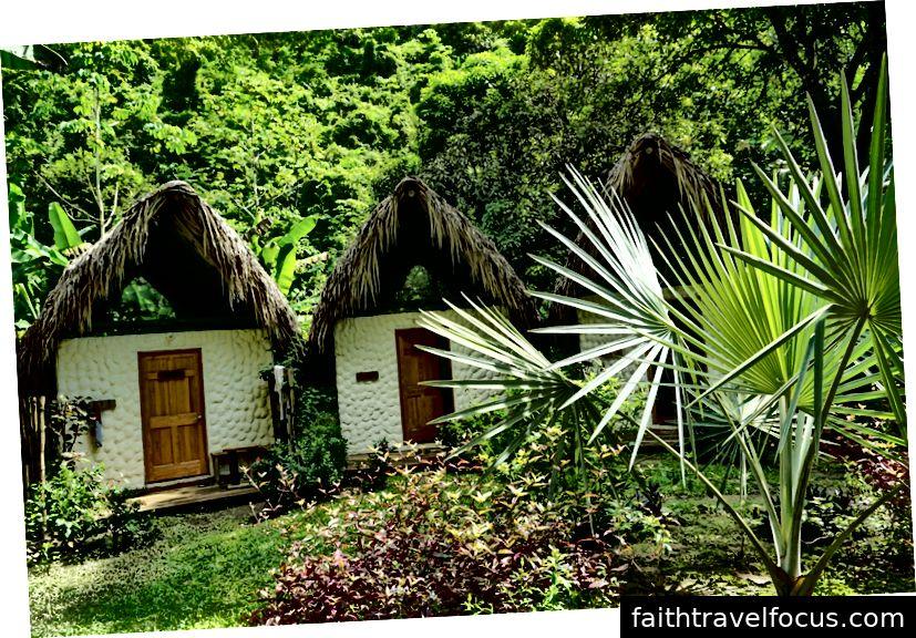 Ngôi nhà ngoài lưới của tôi ở Colombia năm ngoái.
