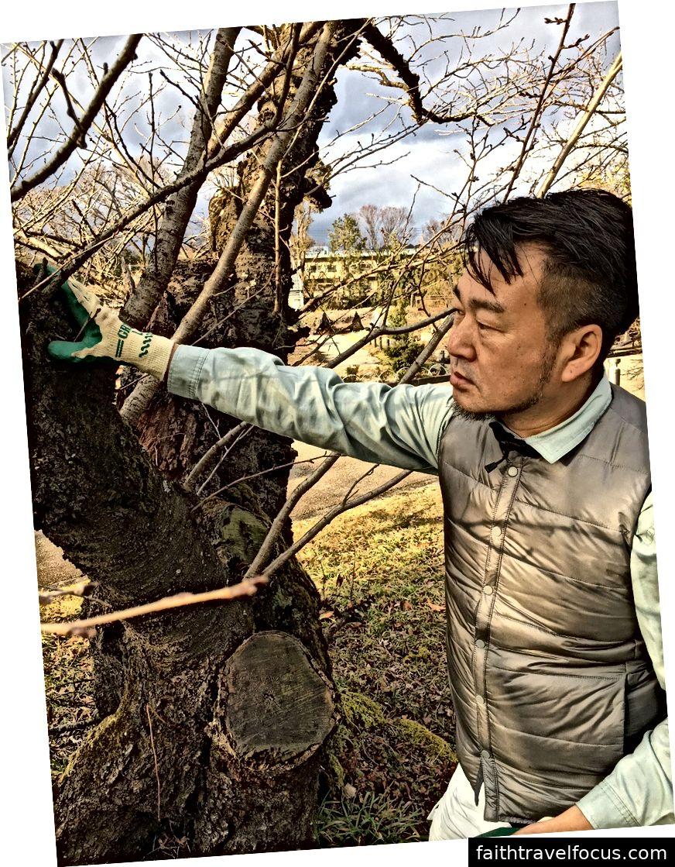 Bản quyền: http://www.pref.kyoto.jp/