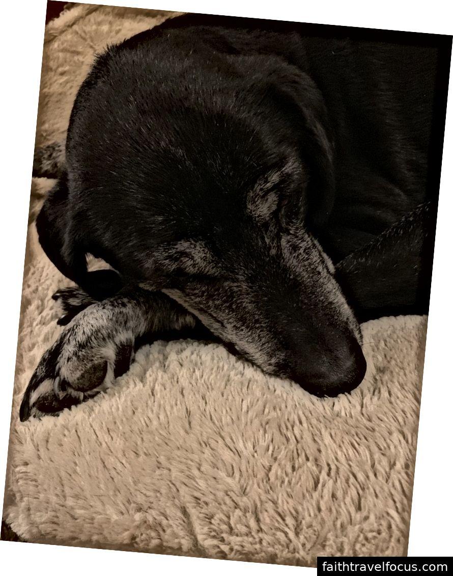 Ma vương ngủ trưa. Thật là một bà ngoại ngọt ngào.