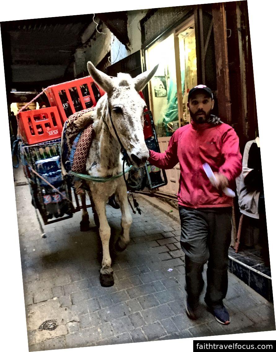 Một con la mang thùng đồ uống có ga qua trung tâm Fez ở Morocco