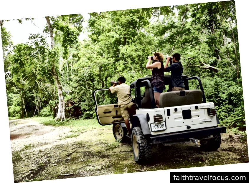 Safari động vật hoang dã ở quận Orange Walk, Belize