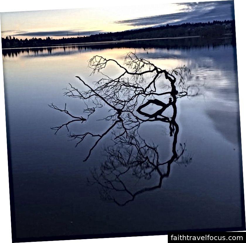 Hồ xanh, Seattle, WA