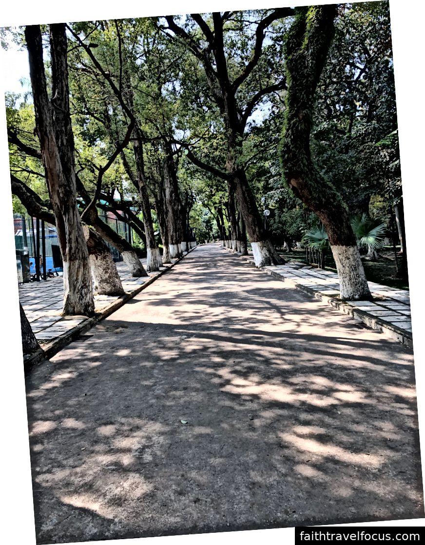 Chúng tôi sẽ thấy nơi con đường này đưa tôi tới! Ảnh chụp ở trường trong khi trên đường đi chơi một số pong pong