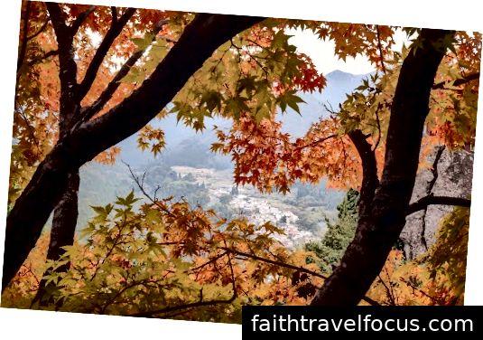 Màu sắc mùa thu đẹp