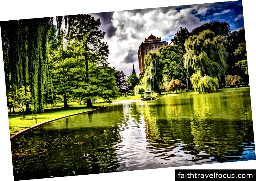 Cây xanh tươi tốt của Boston Common 'gần như là biểu tượng của thành phố Di sản Ailen.