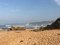 Mountain Ash tại Maits Rest và Johanna Beach, một bãi biển Surfing nổi tiếng.