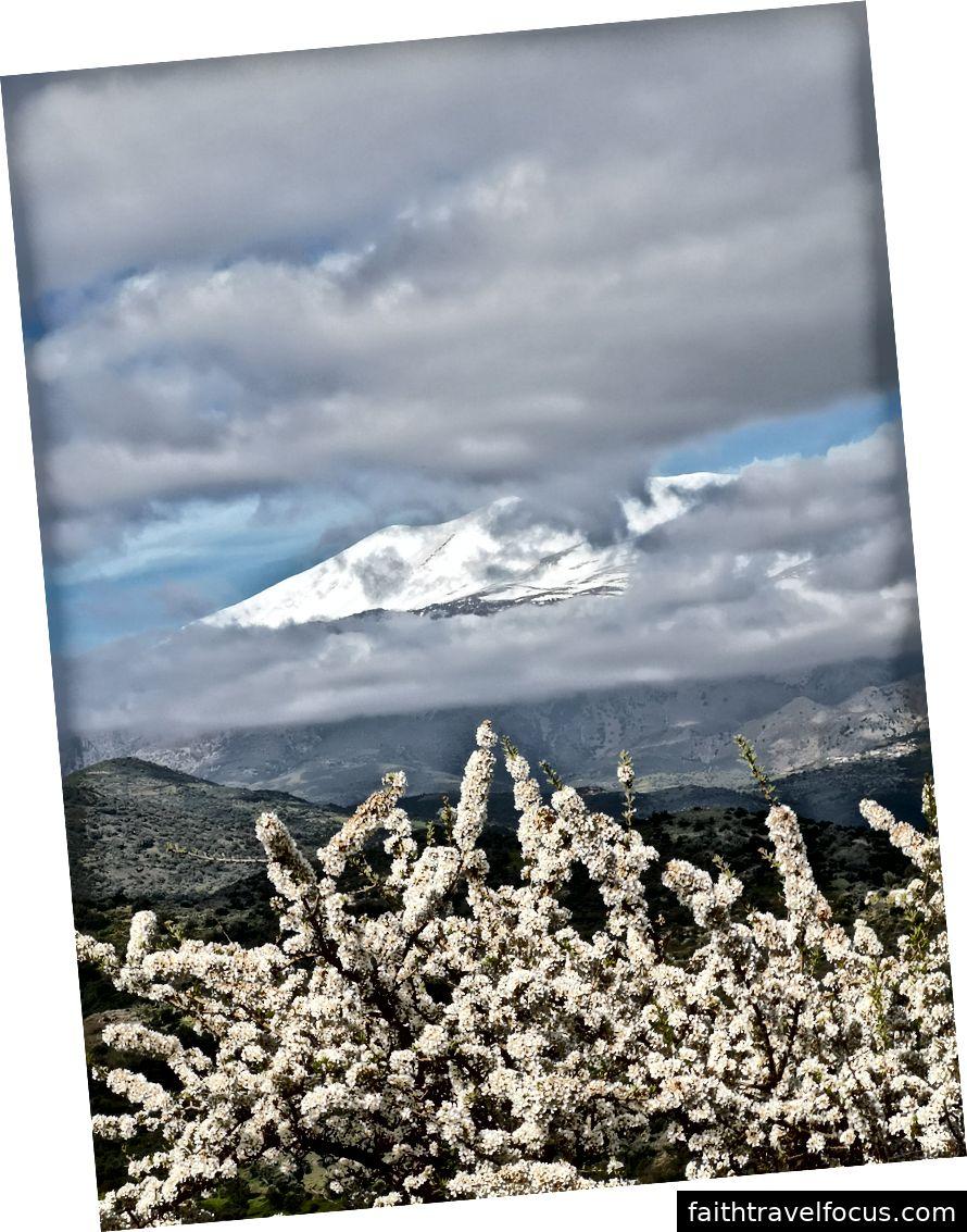 Hoa và tuyết: đó là những gì bạn có thể mong đợi trong tháng ba!