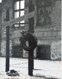 Ảnh của tôi, Berlin 1966