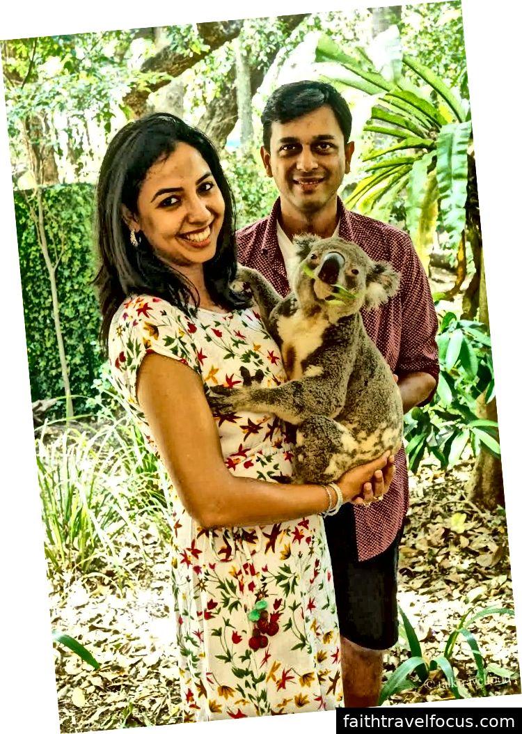 Nhận bản thân nhấp chuột với Koala quá dễ thương này chỉ trong 25 AUD