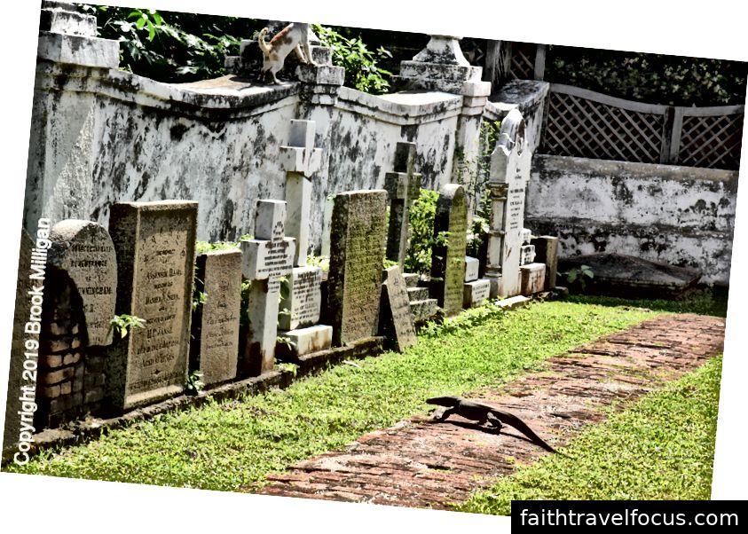 Đá mộ và một con thằn lằn theo dõi trong sân nhà thờ của Nhà thờ Cải cách Hà Lan