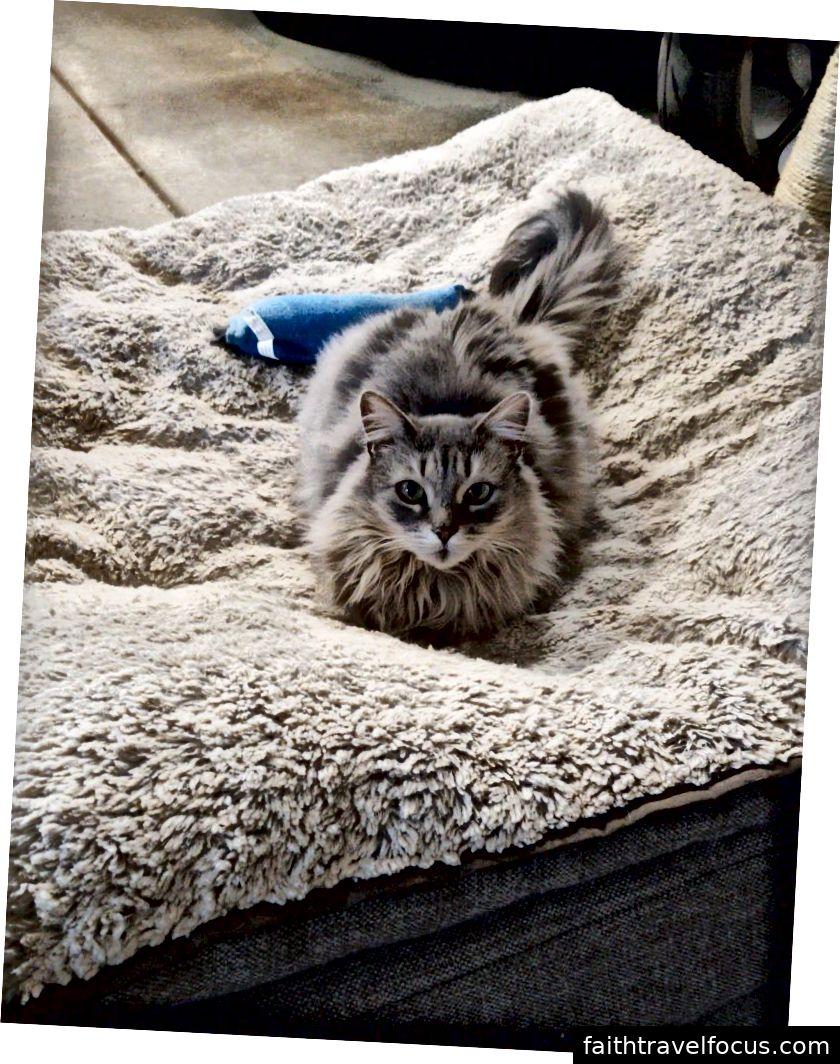 Jabula thích chiếc giường quá khổ của cô.