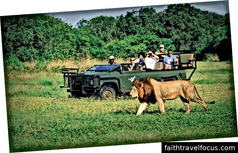 công viên krugarnational - southafricapackages.com