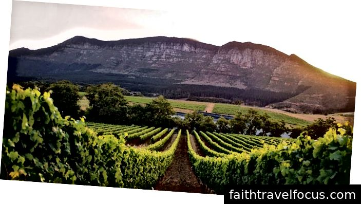 Cape Wineland- southafricapackages.com