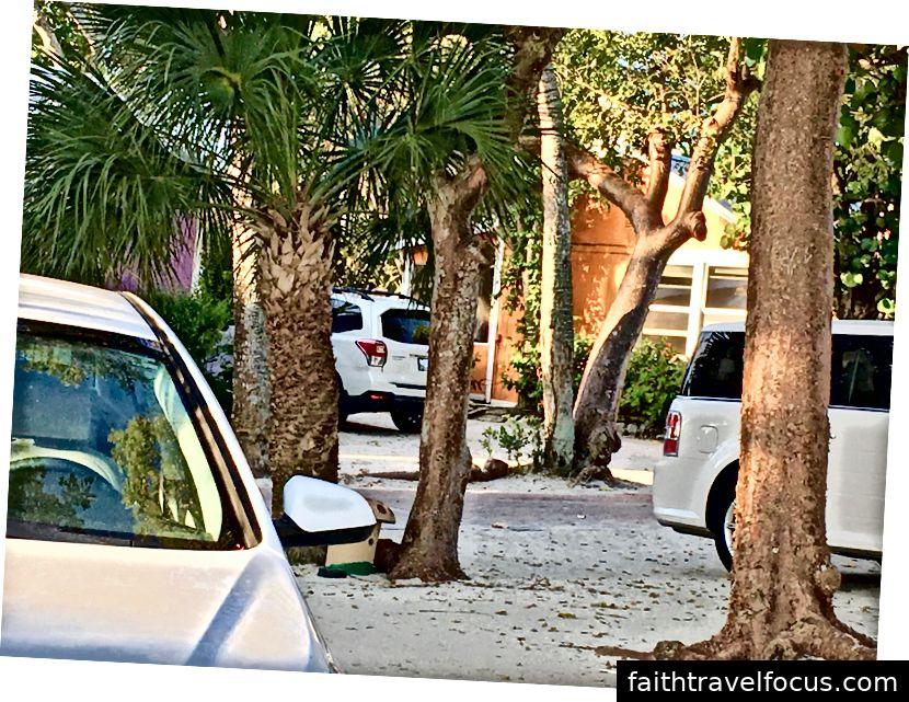 Chiếc xe màu trắng của chúng tôi ở bên trái. . .