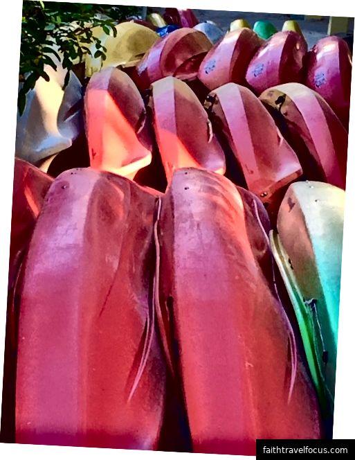 Thuyền kayak mạo danh trái cây nhiệt đới