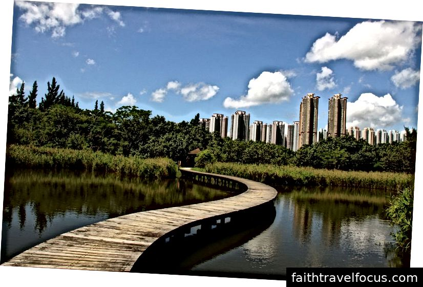 Công viên đầm lầy Hồng Kông | Tín dụng hình ảnh: Người dùng: Matthias Süßen, Công viên đầm lầy Hồng Kông893, CC BY-SA 3.0