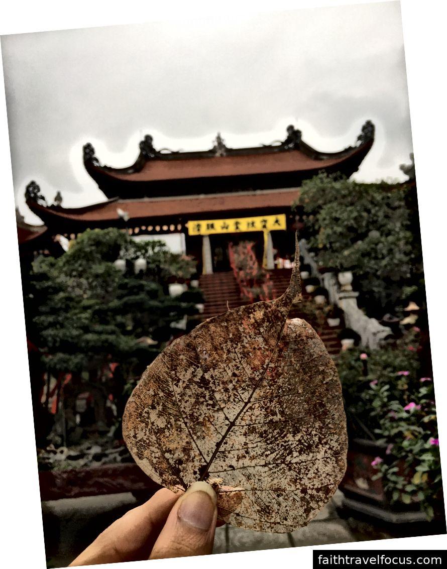 Ngôi chùa đằng sau một chiếc lá xinh đẹp © Thuận Sarzynski