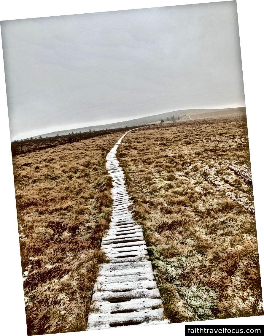 霜と氷がCheviotsを歩いています。