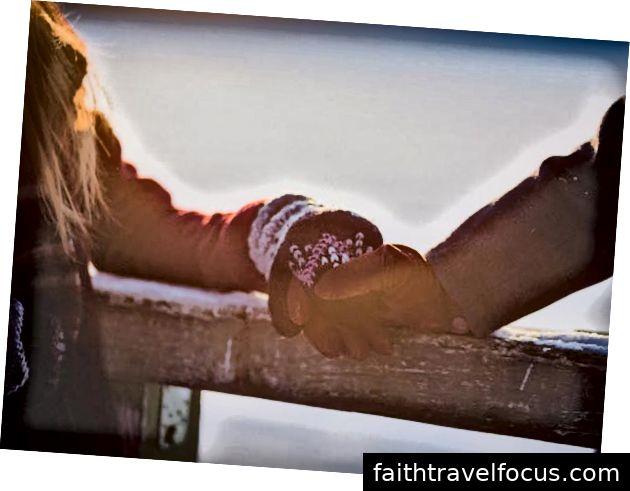 Tìm một nơi hoàn hảo cho một kỳ nghỉ tuần trăng mật? Kiev cung cấp nhiều hơn những gì bạn có thể tưởng tượng. Lên kế hoạch cho chuyến đi của bạn ngày hôm nay!