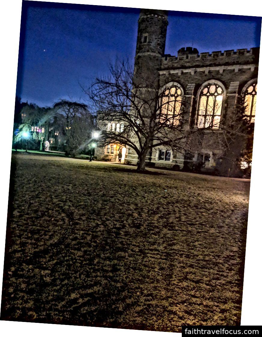 Hình ảnh hoa anh đào bên ngoài trường đại học lúc 6:30 chiều. Tuần 4, 28/2/2019