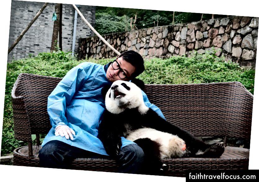 ผู้เขียนกำลังนั่งกับหมีแพนด้าในเฉิงตูประเทศจีน Emily Huh