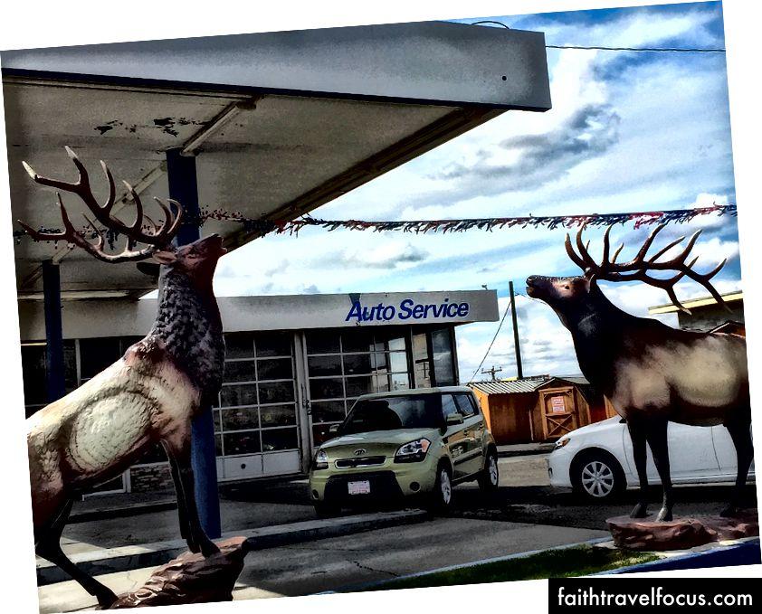 Pendleton, Oregon.