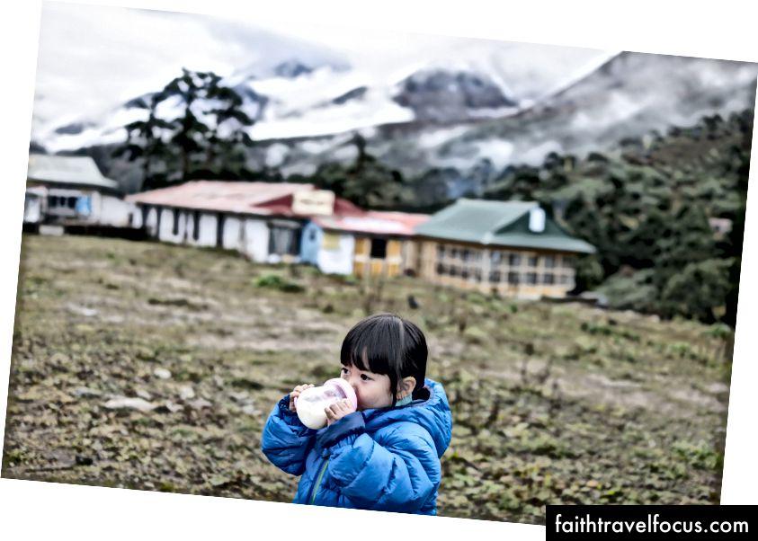 เชาเชาน้อยดื่มนมวันละสองครั้งเพื่อให้แน่ใจว่าเธอได้รับสารอาหารที่เพียงพอ นั่นคือนม Friso ตลอดทาง