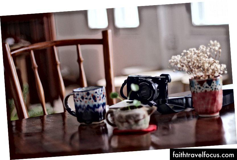 Размер - такой же маленький, как чайная чашка. Фото Прасанны Кумар на Unsplash