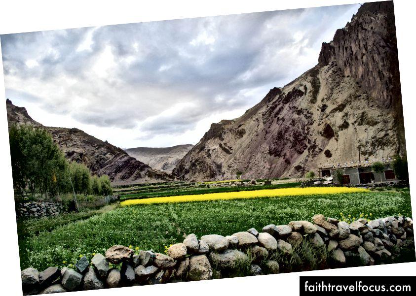Lato Village, Ladakh, อินเดีย