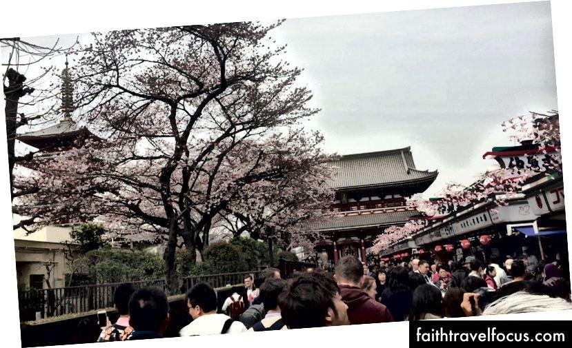 Cùng Nakamise-dori tới Sensoji ở Asakusa