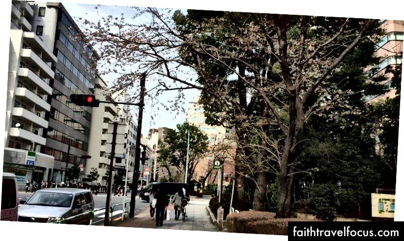 Dọc theo con đường chính đến thành phố Ánh Dương ở Ikebukuro