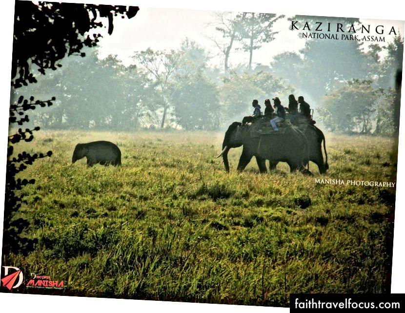 Vườn quốc gia Kaziranga, Assam