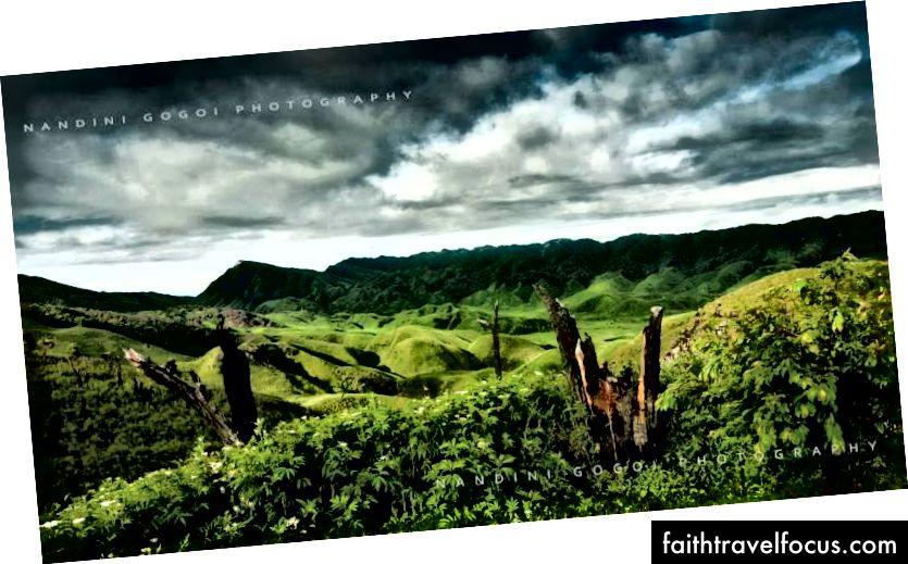 Thung lũng Dzokou, Nagaland