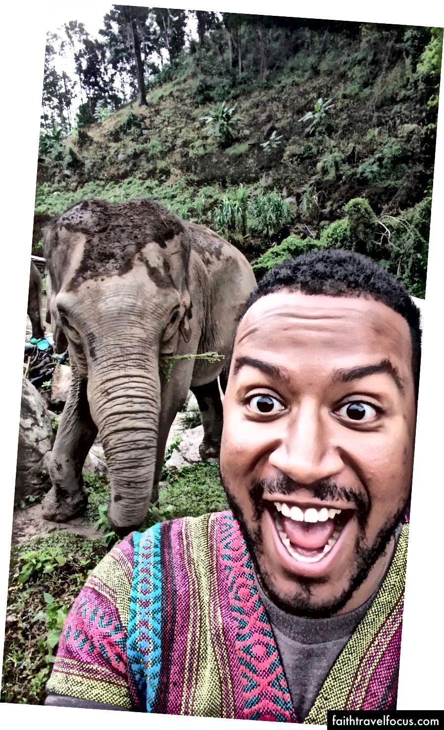 Toto je pravdepodobne jediný najšťastnejší okamih môjho života. Dobrovoľníctvo so slonmi v Chiang Mai, Thajsko.