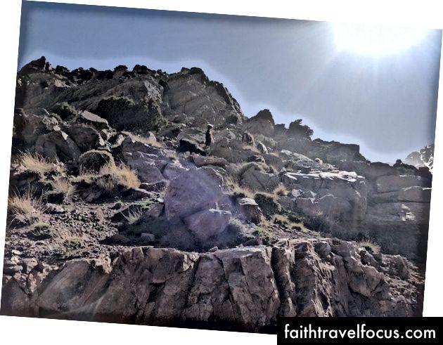 Dê núi chúng tôi phát hiện khi đi bộ lên Jebel Toubkal