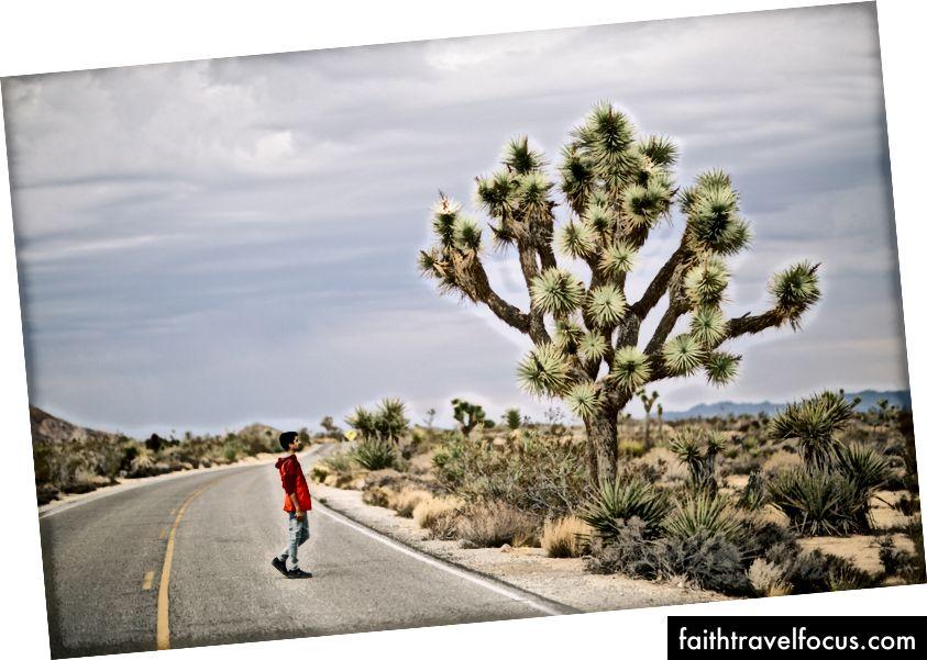 Xem bài viết gốc của tôi ở đây: https://medium.com/cillage/moments-from-southwest-america-28f3ad8f9334