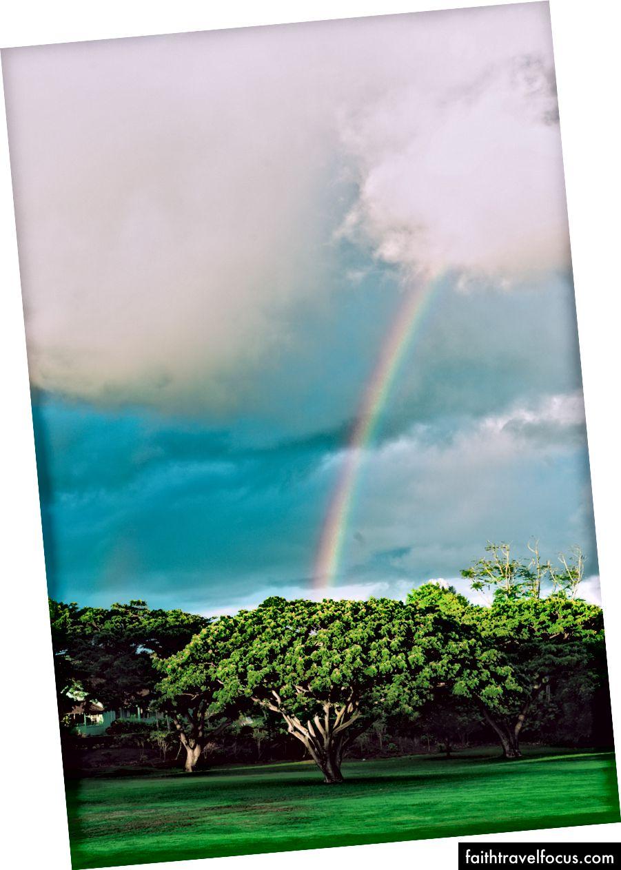 Kauai, 2017. Tác giả Josh S. Rose