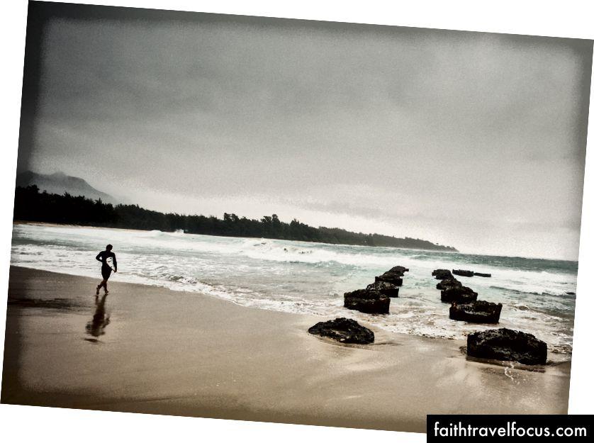 Kauai, 2017. Tác giả Josh S. Rose.